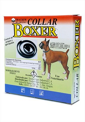 Collar de animales Boxer