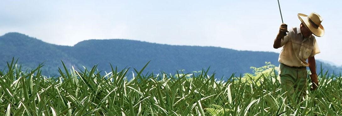 tracker agro equipos de fumigacion
